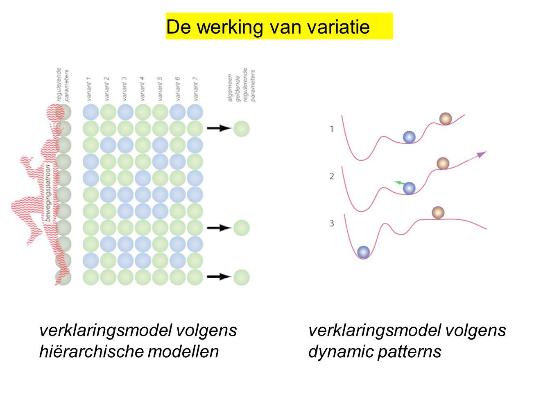 verklaringsmodel volgens hiërarchische modellen verklaringsmodel volgens dynamic patterns De werking van variatie
