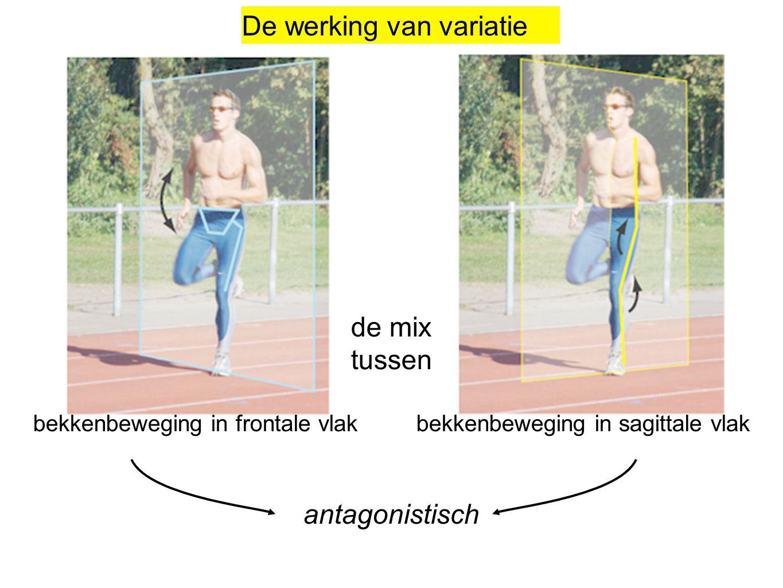 de mix tussen bekkenbeweging in frontale vlak bekkenbeweging in sagittale vlak antagonistisch De werking van variatie