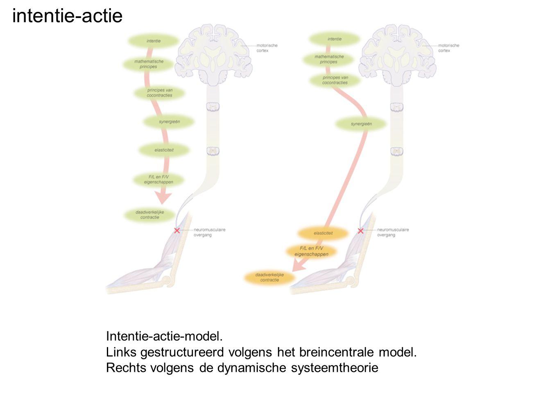 Intentie-actie-model. Links gestructureerd volgens het breincentrale model. Rechts volgens de dynamische systeemtheorie intentie-actie
