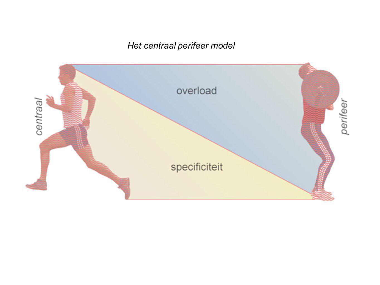 Het centraal perifeer model
