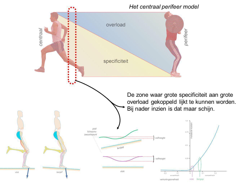 Het centraal perifeer model De zone waar grote specificiteit aan grote overload gekoppeld lijkt te kunnen worden.