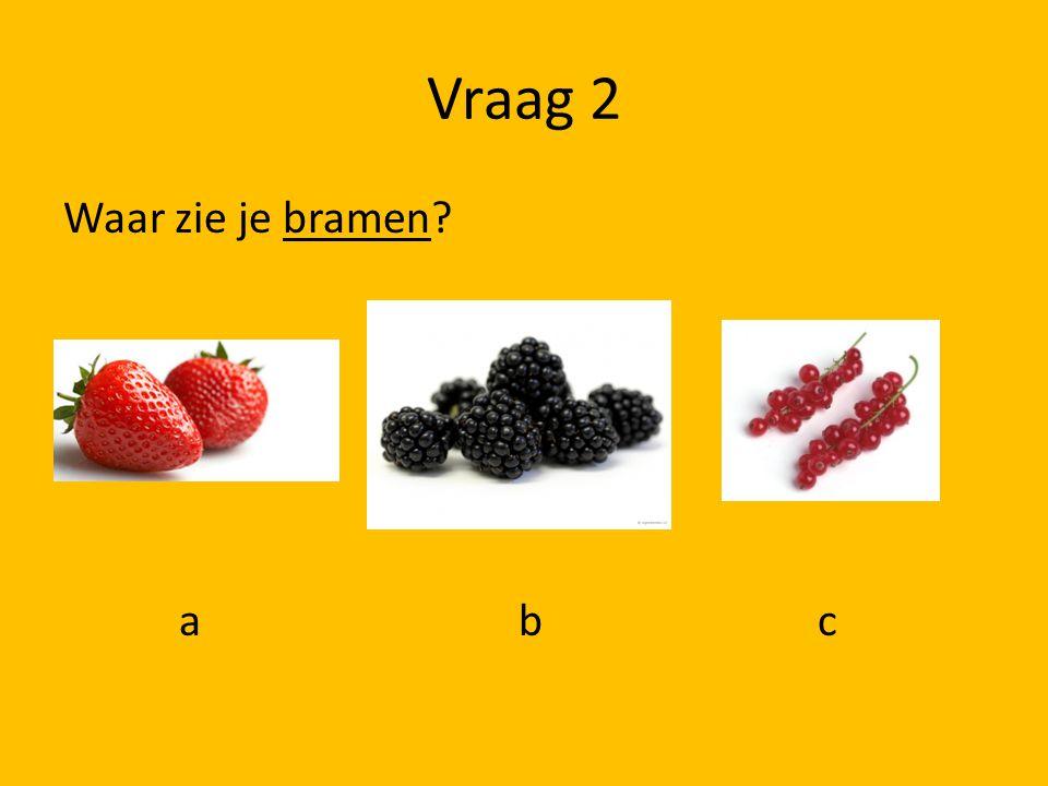 Vraag 1 Welke jongen kijkt beschaamd? a b c