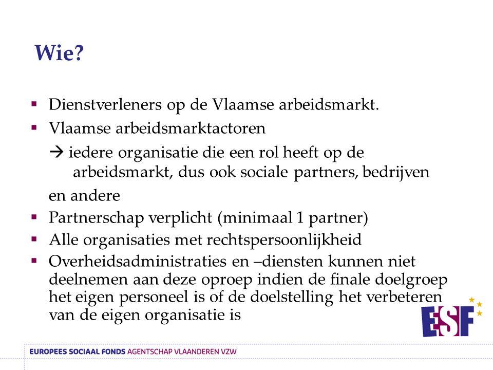  Dienstverleners op de Vlaamse arbeidsmarkt.