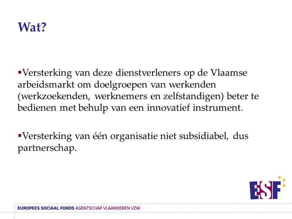Wat?  Versterking van deze dienstverleners op de Vlaamse arbeidsmarkt om doelgroepen van werkenden (werkzoekenden, werknemers en zelfstandigen) beter