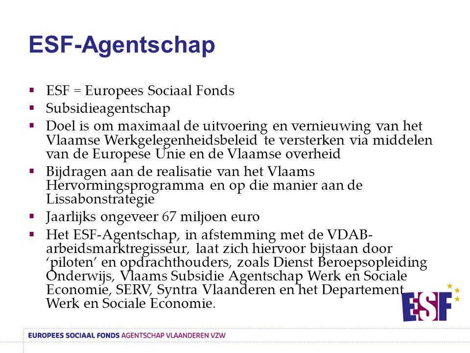 ESF-Agentschap  ESF = Europees Sociaal Fonds  Subsidieagentschap  Doel is om maximaal de uitvoering en vernieuwing van het Vlaamse Werkgelegenheidsbeleid te versterken via middelen van de Europese Unie en de Vlaamse overheid  Bijdragen aan de realisatie van het Vlaams Hervormingsprogramma en op die manier aan de Lissabonstrategie  Jaarlijks ongeveer 67 miljoen euro  Het ESF-Agentschap, in afstemming met de VDAB- arbeidsmarktregisseur, laat zich hiervoor bijstaan door 'piloten' en opdrachthouders, zoals Dienst Beroepsopleiding Onderwijs, Vlaams Subsidie Agentschap Werk en Sociale Economie, SERV, Syntra Vlaanderen en het Departement Werk en Sociale Economie.
