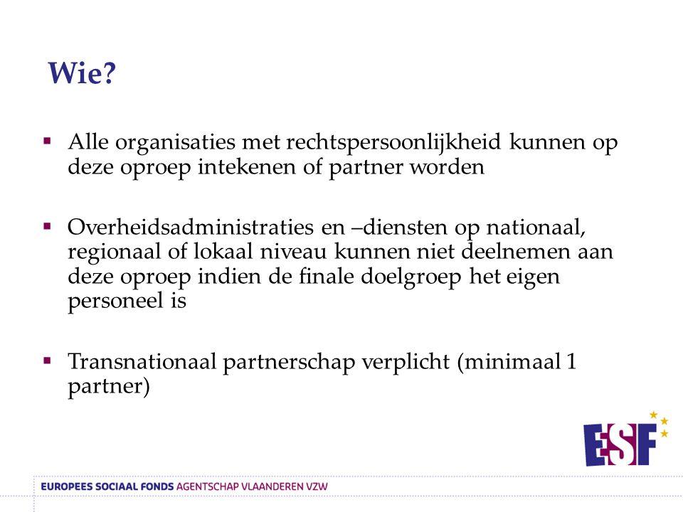  Alle organisaties met rechtspersoonlijkheid kunnen op deze oproep intekenen of partner worden  Overheidsadministraties en –diensten op nationaal, regionaal of lokaal niveau kunnen niet deelnemen aan deze oproep indien de finale doelgroep het eigen personeel is  Transnationaal partnerschap verplicht (minimaal 1 partner) Wie