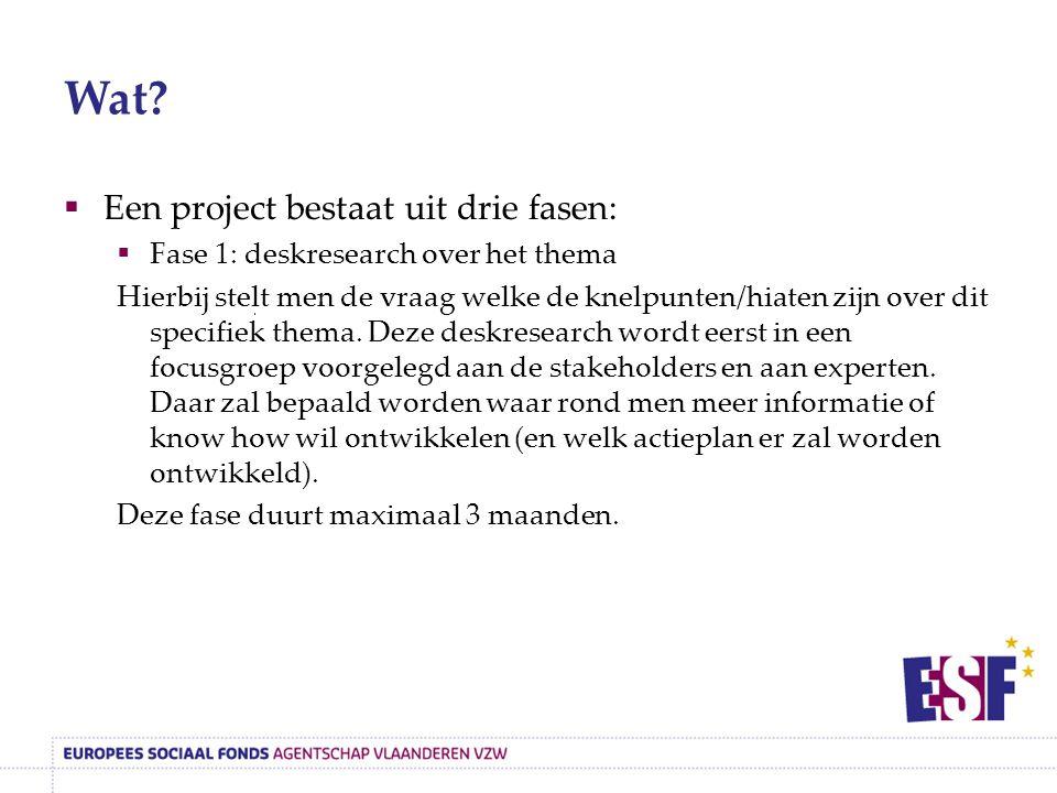 Wat?  Een project bestaat uit drie fasen:  Fase 1: deskresearch over het thema Hierbij stelt men de vraag welke de knelpunten/hiaten zijn over dit s