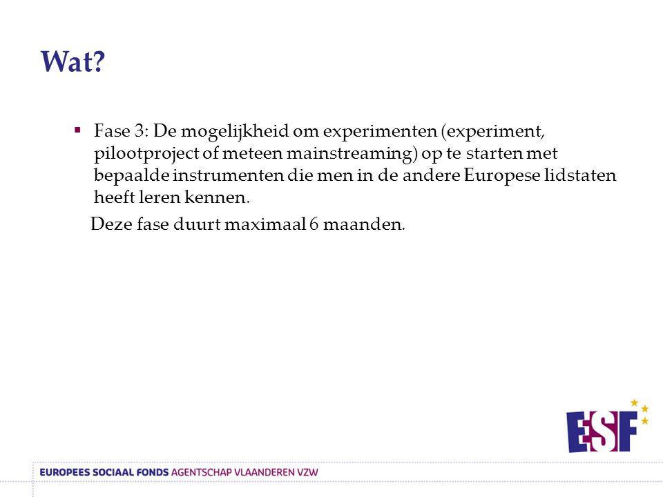 Wat?  Fase 3: De mogelijkheid om experimenten (experiment, pilootproject of meteen mainstreaming) op te starten met bepaalde instrumenten die men in