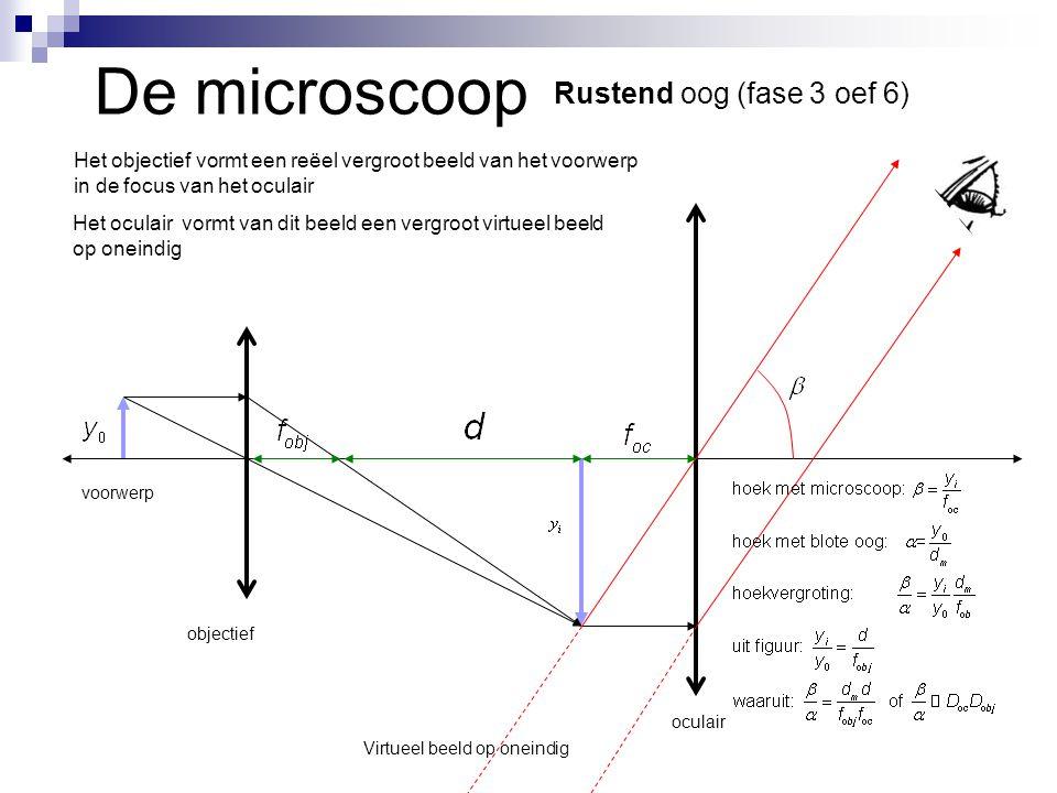 De microscoop Rustend oog (fase 3 oef 6) voorwerp objectief oculair Het objectief vormt een reëel vergroot beeld van het voorwerp in de focus van het