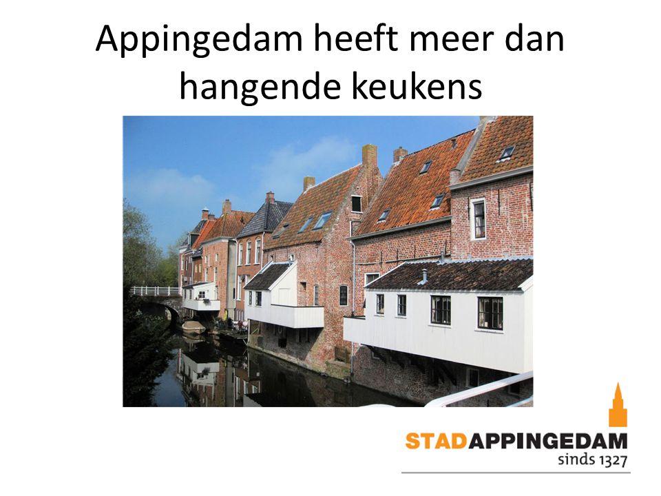Appingedam heeft meer dan hangende keukens