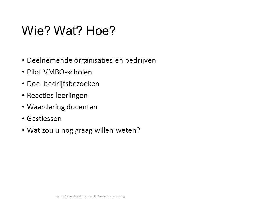 Wie? Wat? Hoe? Deelnemende organisaties en bedrijven Pilot VMBO-scholen Doel bedrijfsbezoeken Reacties leerlingen Waardering docenten Gastlessen Wat z