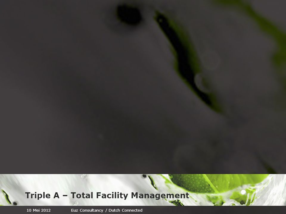 Triple A – Total Facility Management 10 Mei 2012Euz Consultancy / Dutch Connected 183 Tips, inzichten en ervaringen over het nieuwe leiderschap. Met b