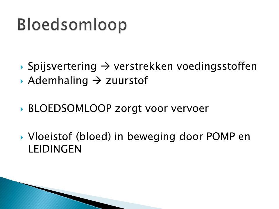  Spijsvertering  verstrekken voedingsstoffen  Ademhaling  zuurstof  BLOEDSOMLOOP zorgt voor vervoer  Vloeistof (bloed) in beweging door POMP en
