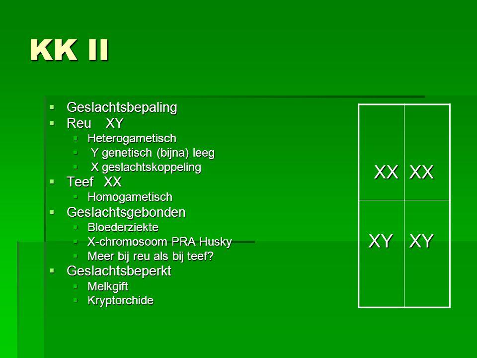 KK II  Geslachtsbepaling  Reu XY  Heterogametisch  Y genetisch (bijna) leeg  X geslachtskoppeling  Teef XX  Homogametisch  Geslachtsgebonden 