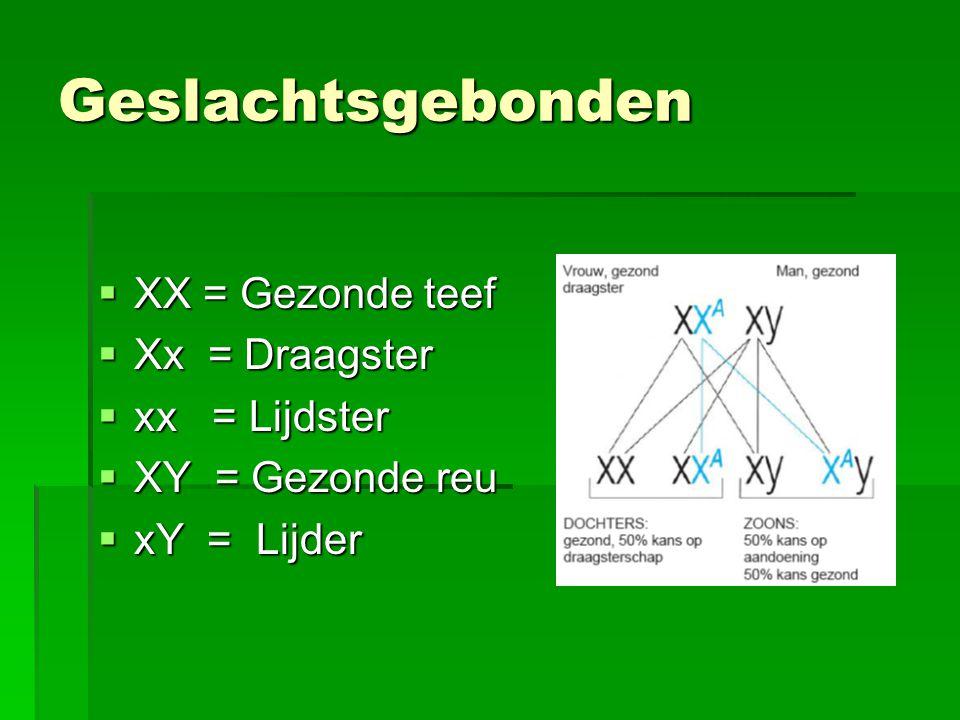 Geslachtsgebonden  XX = Gezonde teef  Xx = Draagster  xx = Lijdster  XY = Gezonde reu  xY = Lijder