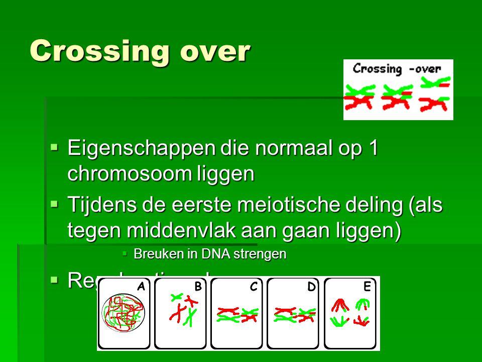 Crossing over  Eigenschappen die normaal op 1 chromosoom liggen  Tijdens de eerste meiotische deling (als tegen middenvlak aan gaan liggen)  Breuke
