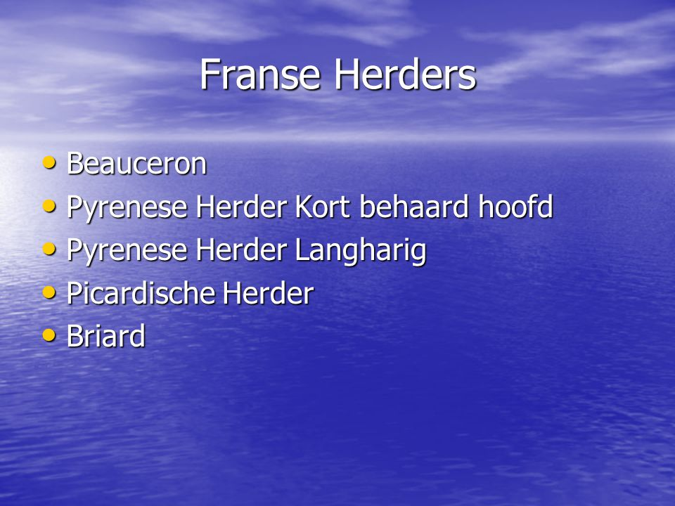 Franse Herders Beauceron Beauceron Pyrenese Herder Kort behaard hoofd Pyrenese Herder Kort behaard hoofd Pyrenese Herder Langharig Pyrenese Herder Langharig Picardische Herder Picardische Herder Briard Briard