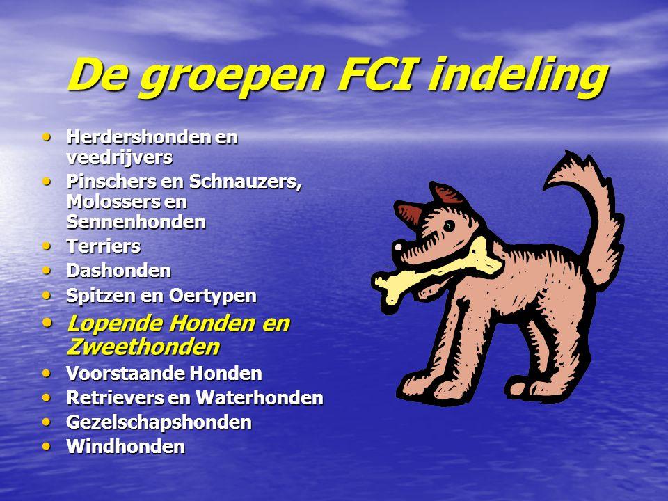 De groepen FCI indeling Herdershonden en veedrijvers Herdershonden en veedrijvers Pinschers en Schnauzers, Molossers en Sennenhonden Pinschers en Schn