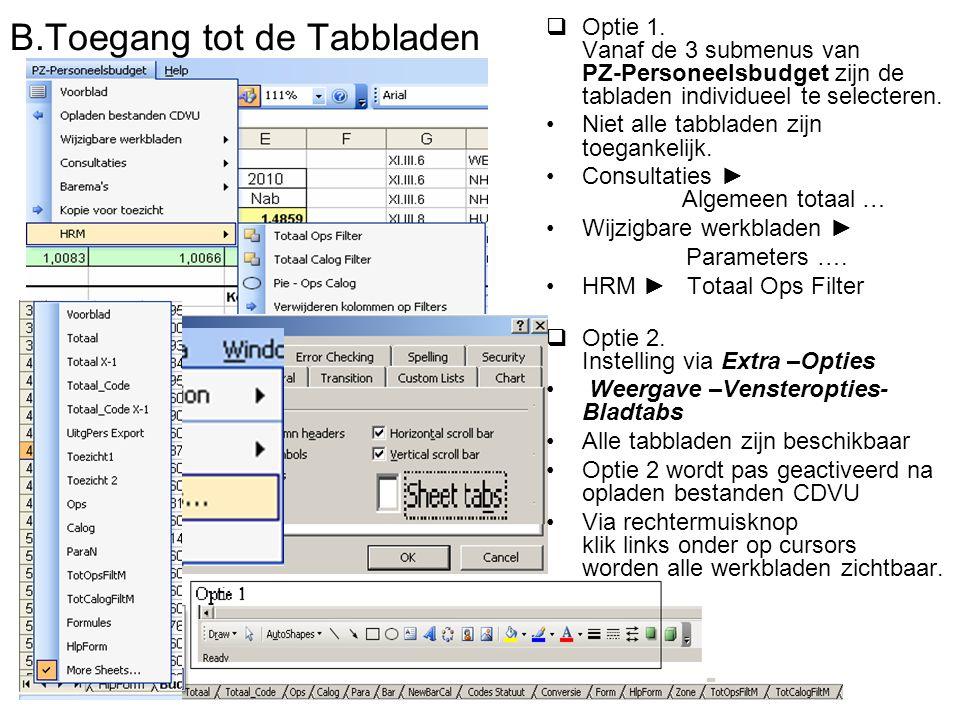 B.Toegang tot de Tabbladen  Optie 1.