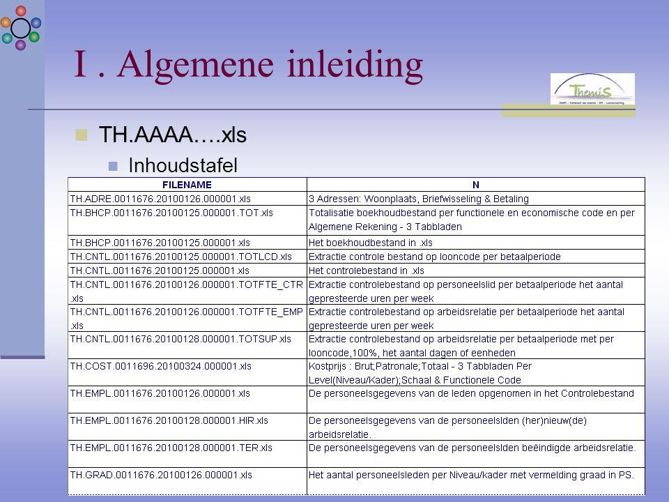 I. Algemene inleiding TH.AAAA….xls Inhoudstafel