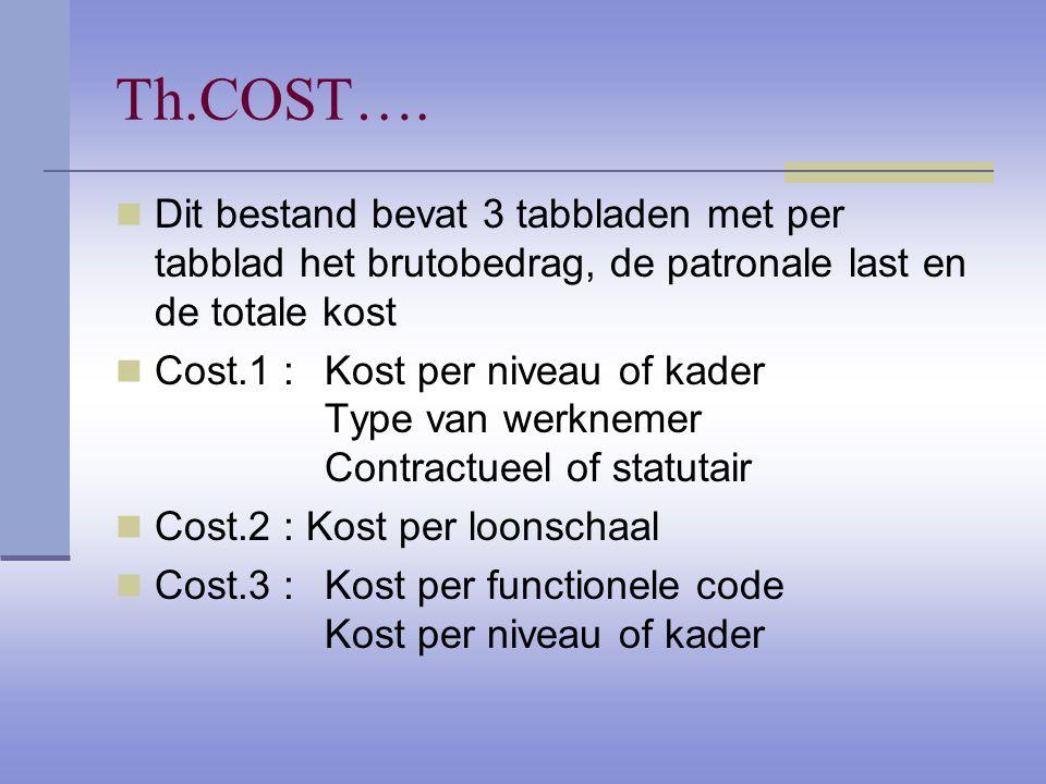 Th.COST…. Dit bestand bevat 3 tabbladen met per tabblad het brutobedrag, de patronale last en de totale kost Cost.1 : Kost per niveau of kader Type va
