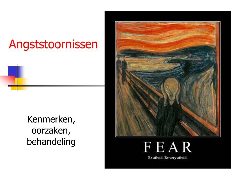 Inhoud Angst Angststoornissen volgens DSM IV Ontstaan Primaire en secundaire angst Behandeling Tien tips voor de omgang Internetadressen