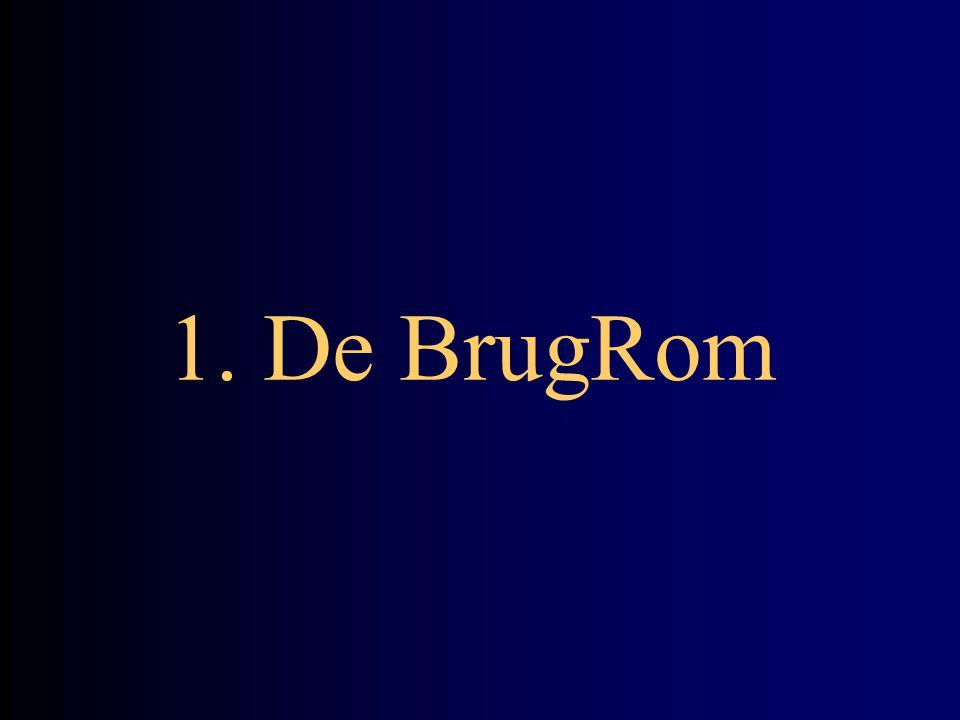 Waarom een BrugRom?
