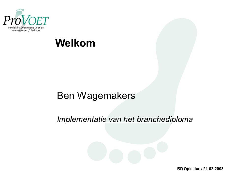 BD Opleiders 21-02-2008 Welkom Ben Wagemakers Implementatie van het branchediploma
