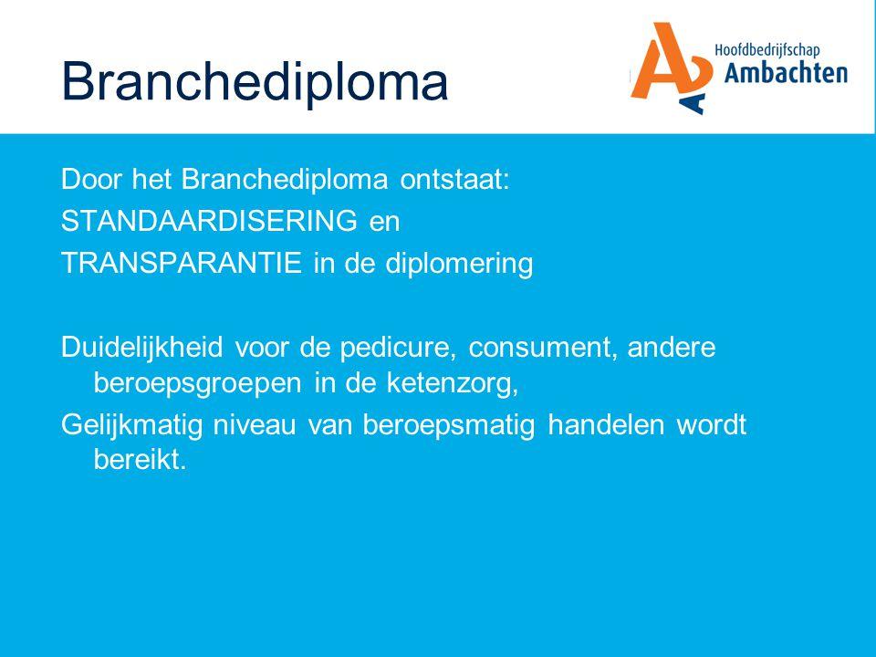 BD Opleiders 21-02-2008 Branche Diploma Branche kwalificatie dossier: Pedicure (P) Medisch Pedicure (MP) Vastgesteld door bestuur HBA 19 december 2007