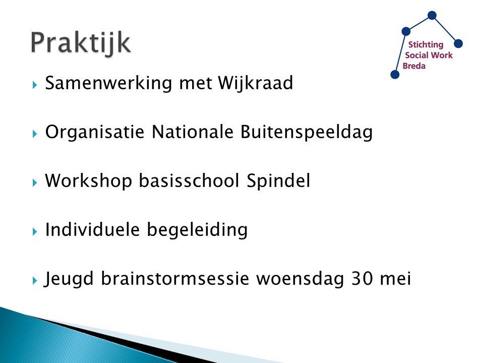  Samenwerking met Wijkraad  Organisatie Nationale Buitenspeeldag  Workshop basisschool Spindel  Individuele begeleiding  Jeugd brainstormsessie w