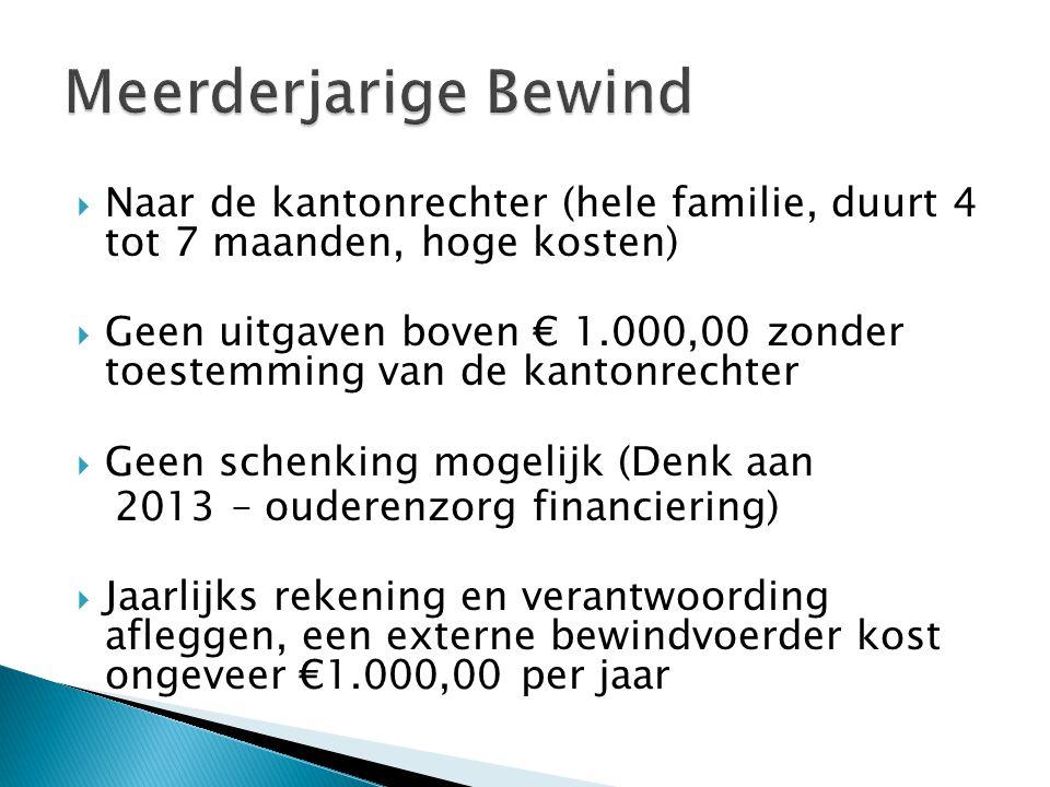  Naar de kantonrechter (hele familie, duurt 4 tot 7 maanden, hoge kosten)  Geen uitgaven boven € 1.000,00 zonder toestemming van de kantonrechter 