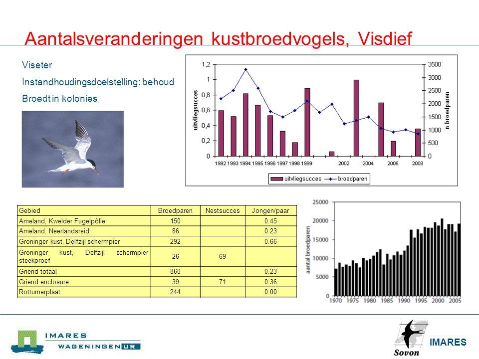 IMARES Aantalsveranderingen kustbroedvogels, Visdief GebiedBroedparenNestsuccesJongen/paar Ameland, Kwelder Fugelpôlle150 0.45 Ameland, Neerlandsreid8