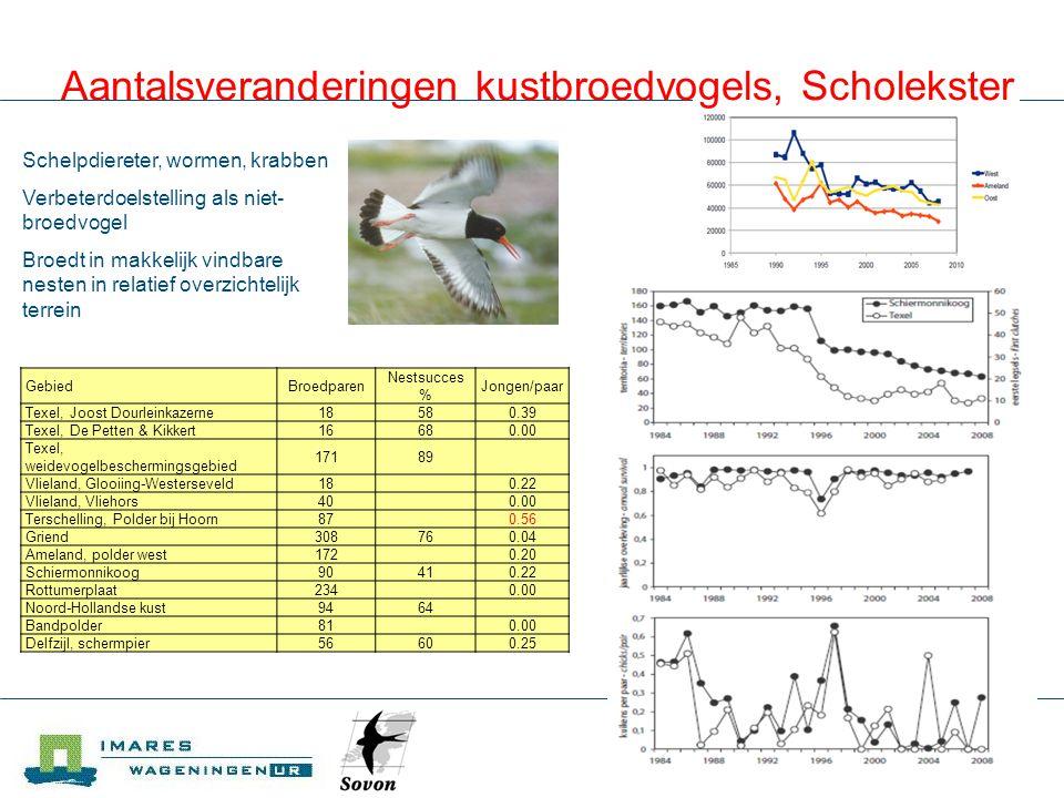 IMARES Aantalsveranderingen kustbroedvogels, Kluut Gebied BroedparenNestsucces %Jongen/paar Groninger kust: Polder Breebaart2871 Groninger kust: Punt van Reide2878 Groninger kust: Polder Breebaart & Punt van Reide 159 0.26 Groninger kust: Klutenplas1100.00 Schiermonnikoog: Balg700.00 Wormeneter, kleine kreeftachtigen Verbeterdoelstelling als broedvogel Broedt in makkelijk vindbare nesten, deels in kolonies, in relatief overzichtelijk terrein GebiedBroedparenNestsucces %Jongen/paar Ameland, polder west13 0.00 Groninger kust: Dollard pl 5-pl 8155 0.06 Groninger kust: Klutenplas4778 Friese kust: Noorderleeg1800.00 Friese kust: Peazemerlannen25 0.00 Groninger kust: Klutenplas49650.52 Groninger kust: kwelder Linthorst- Homanpolder 22 0.09