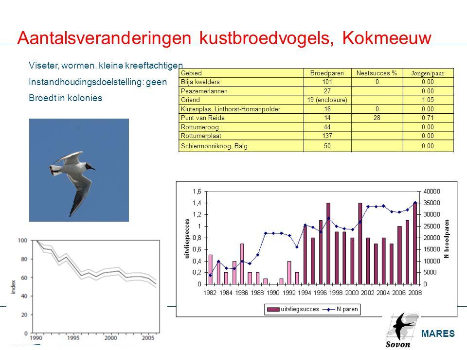 IMARES Aantalsveranderingen kustbroedvogels, Kokmeeuw GebiedBroedparenNestsucces % Jongen/paar Blija kwelders10100.00 Peazemerlannen27 0.00 Griend19 (