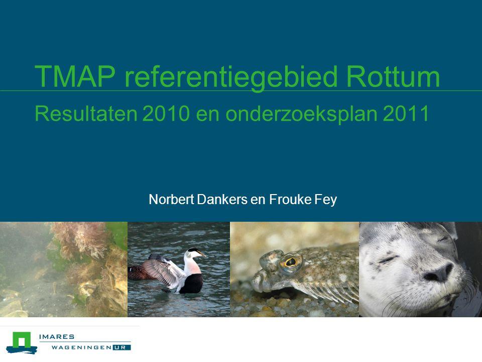 TMAP referentiegebied Rottum Resultaten 2010 en onderzoeksplan 2011 Norbert Dankers en Frouke Fey