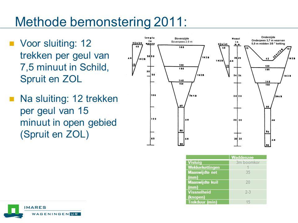 Methode bemonstering 2011: Waddenzee Vistuig3m boomkor Wekkerkettingen1 Maaswijdte net (mm) 35 Maaswijdte kuil (mm) 20 Vissnelheid (knopen) 2-3 Trekduur (min)15 Voor sluiting: 12 trekken per geul van 7,5 minuut in Schild, Spruit en ZOL Na sluiting: 12 trekken per geul van 15 minuut in open gebied (Spruit en ZOL)