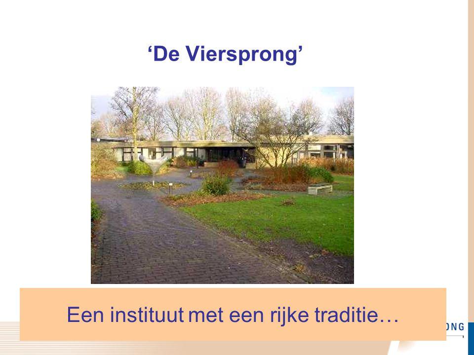 Meer informatie? www.deviersprong.nl. Kennis  Publicaties & Presentaties