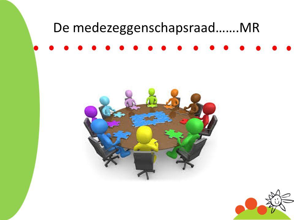 De medezeggenschapsraad…….MR