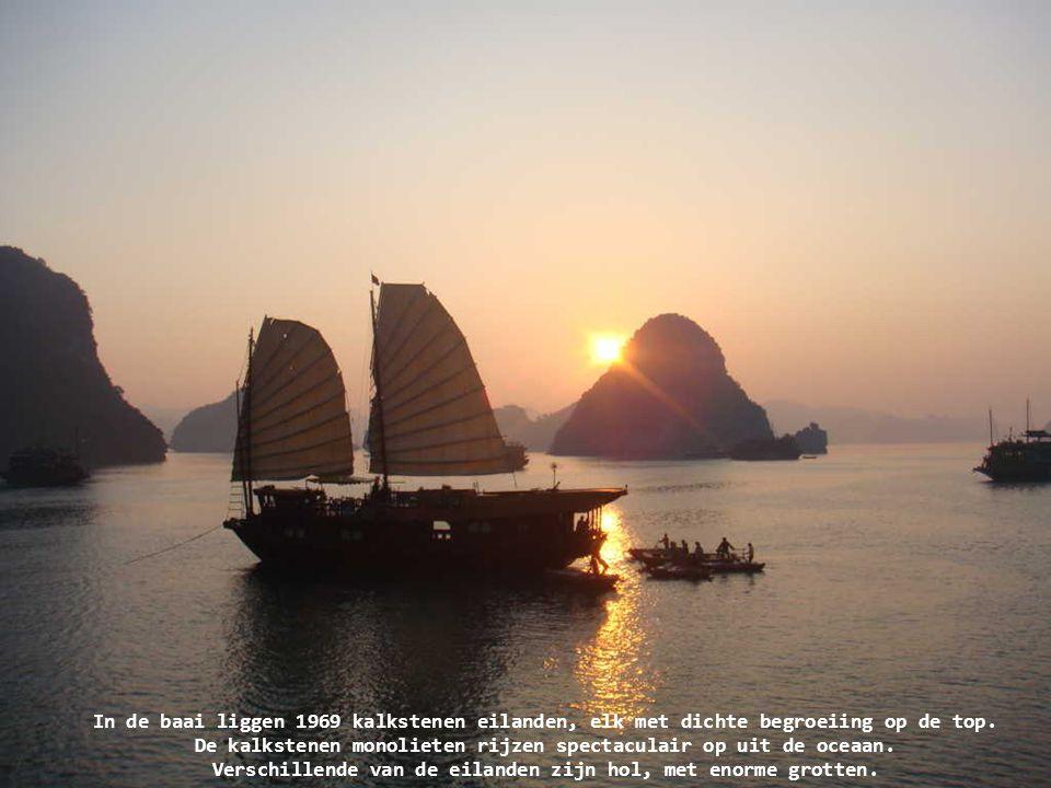 In de baai liggen 1969 kalkstenen eilanden, elk met dichte begroeiing op de top.