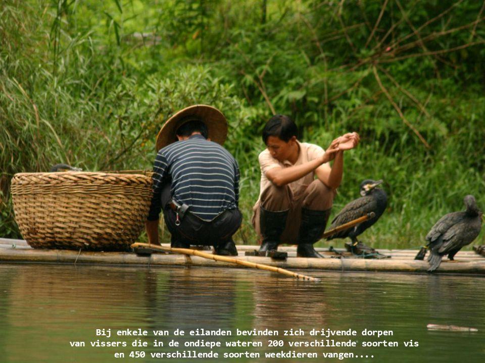 Bij enkele van de eilanden bevinden zich drijvende dorpen van vissers die in de ondiepe wateren 200 verschillende soorten vis en 450 verschillende soorten weekdieren vangen....
