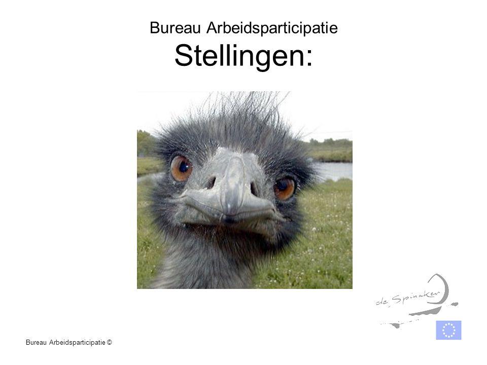 Bureau Arbeidsparticipatie Stellingen: Bureau Arbeidsparticipatie ©
