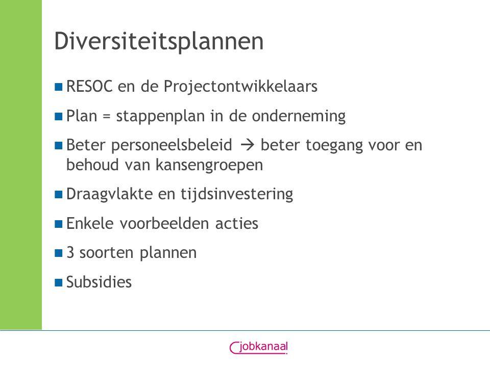 Diversiteitsplannen RESOC en de Projectontwikkelaars Plan = stappenplan in de onderneming Beter personeelsbeleid  beter toegang voor en behoud van kansengroepen Draagvlakte en tijdsinvestering Enkele voorbeelden acties 3 soorten plannen Subsidies