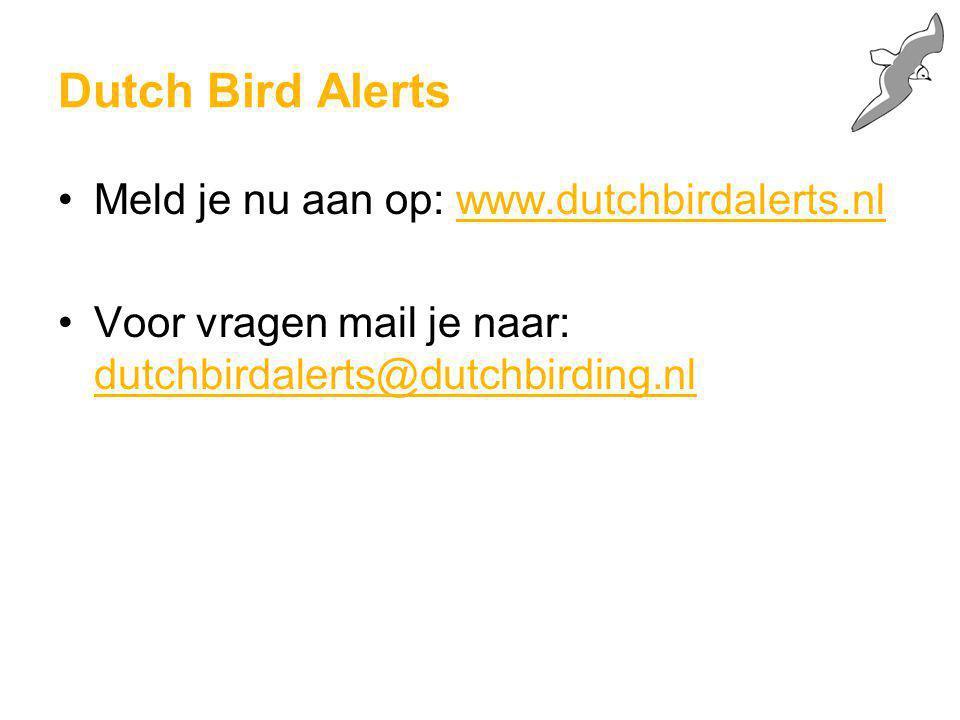 Dutch Bird Alerts Meld je nu aan op: www.dutchbirdalerts.nl Voor vragen mail je naar: dutchbirdalerts@dutchbirding.nl