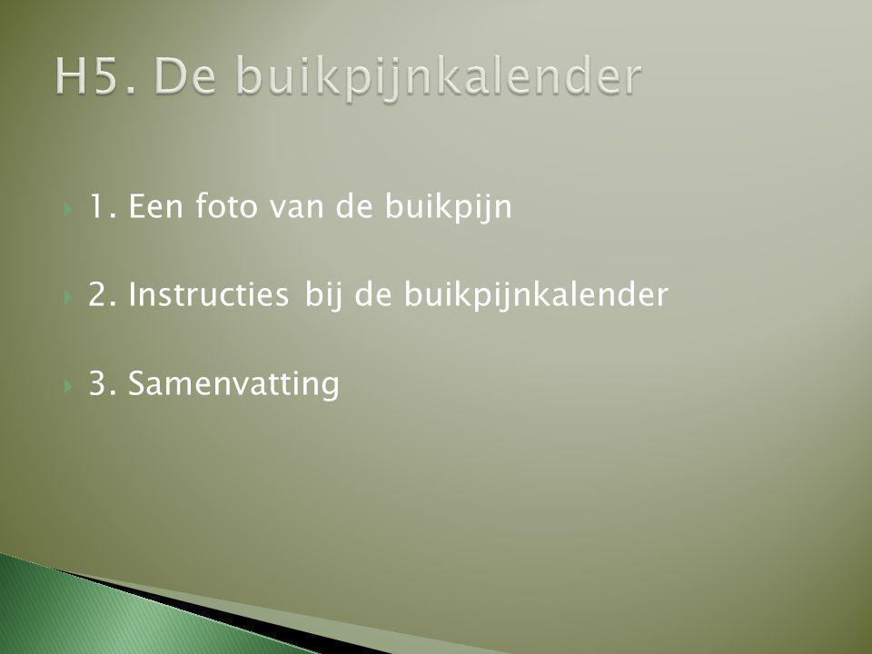  1. Een foto van de buikpijn  2. Instructies bij de buikpijnkalender  3. Samenvatting