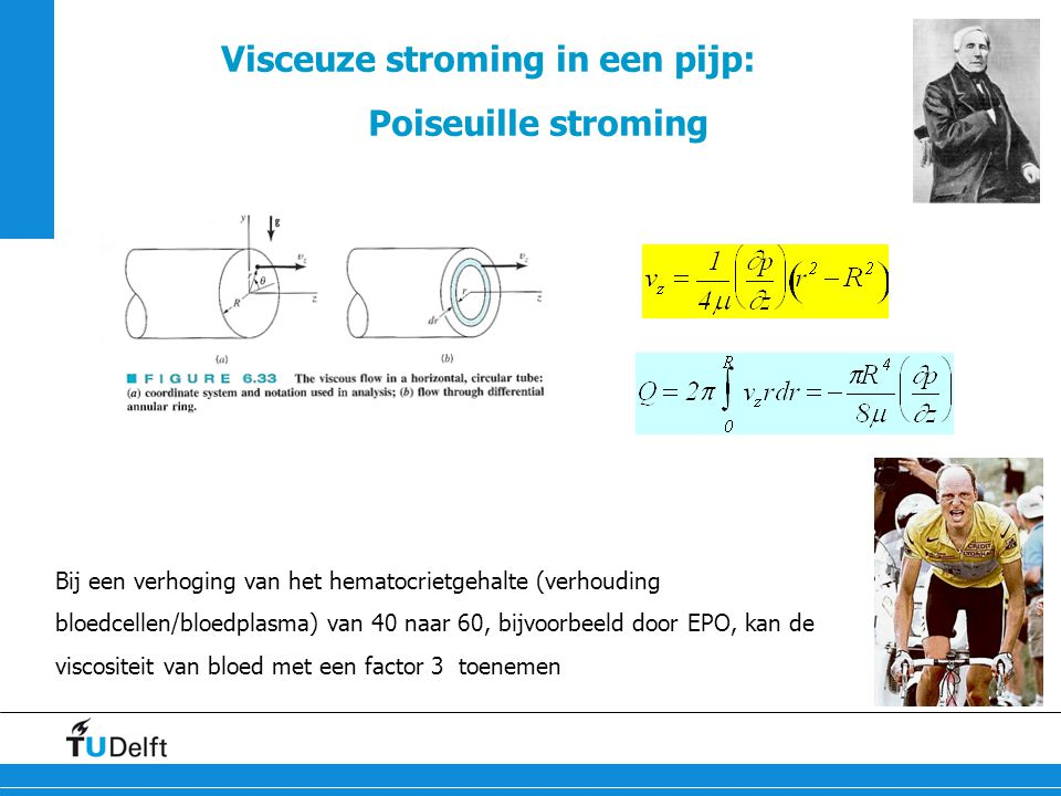 28 Visceuze stroming in een pijp: Poiseuille stroming Bij een verhoging van het hematocrietgehalte (verhouding bloedcellen/bloedplasma) van 40 naar 60
