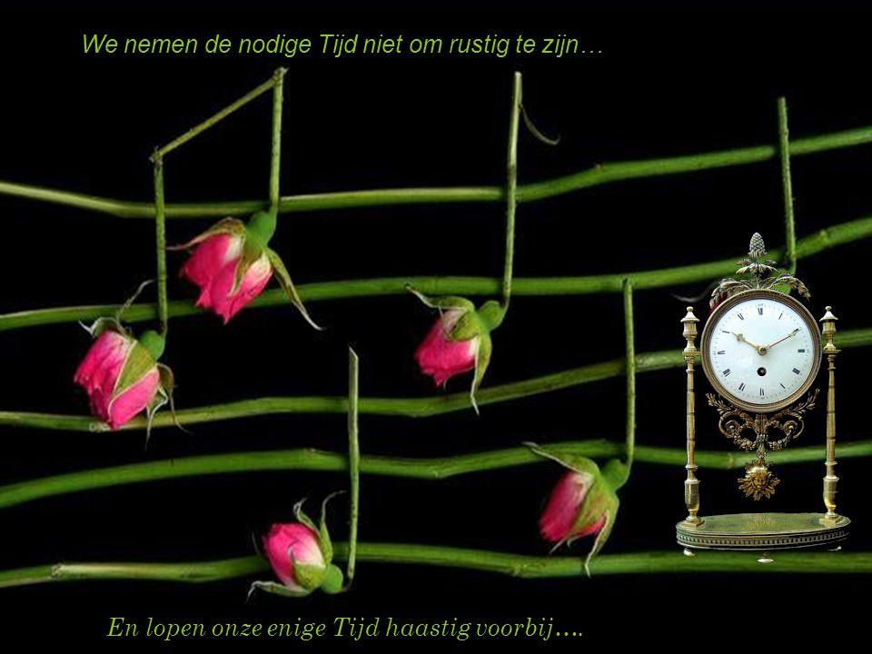 We vergeten de Tijd van nu met de Tijd van toen… En vergeten daarbij dat de tijd nu onze enige tijd is…