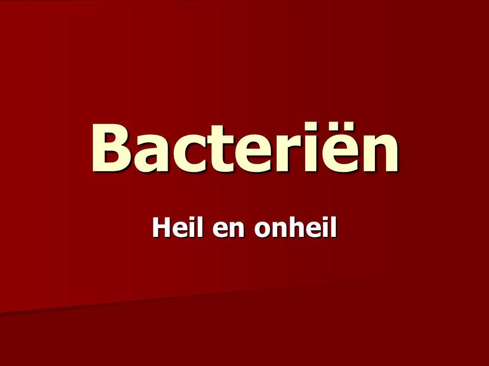 Bacteriën Heil en onheil
