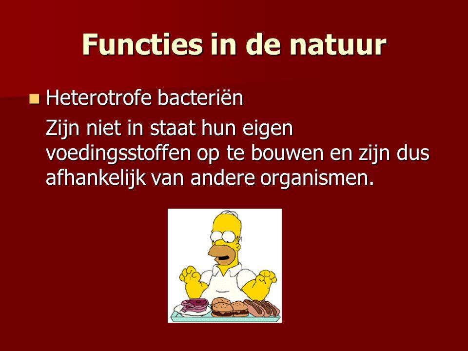 Heterotrofe bacteriën Heterotrofe bacteriën Zijn niet in staat hun eigen voedingsstoffen op te bouwen en zijn dus afhankelijk van andere organismen. F