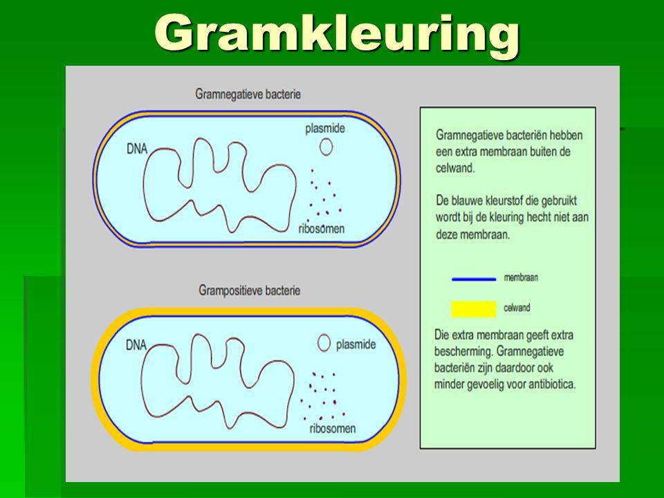 Gramkleuring