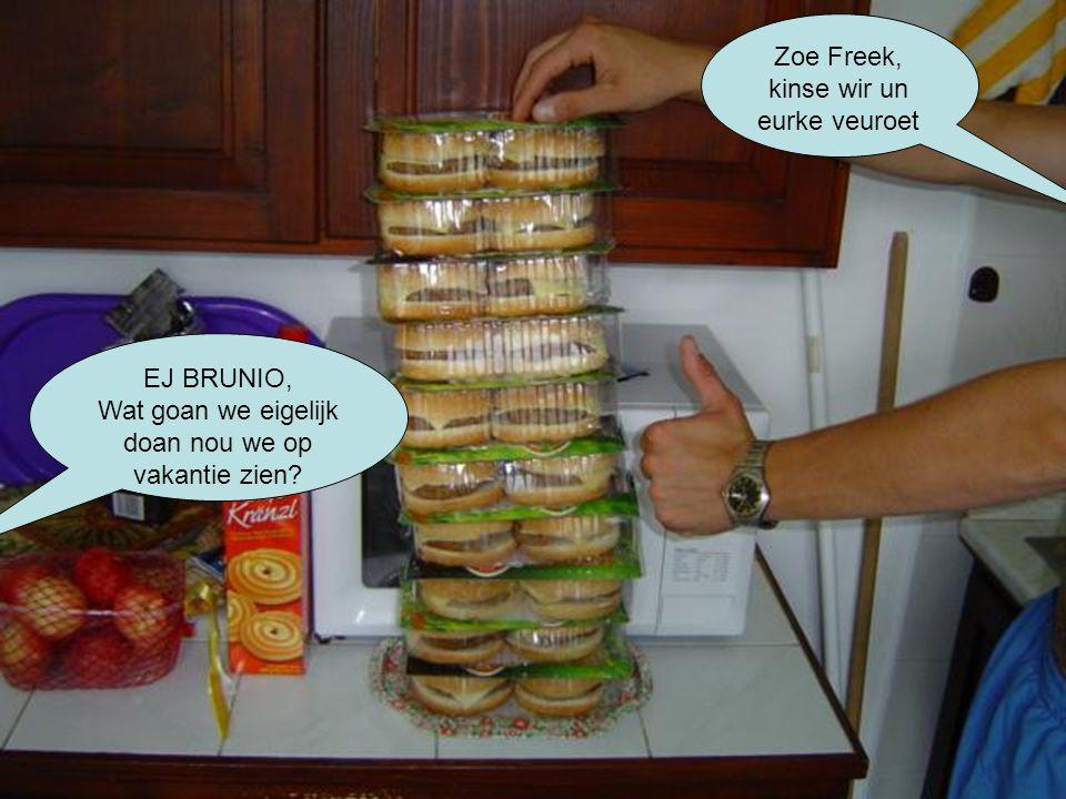 Zoe Freek, kinse wir un eurke veuroet EJ BRUNIO, Wat goan we eigelijk doan nou we op vakantie zien?